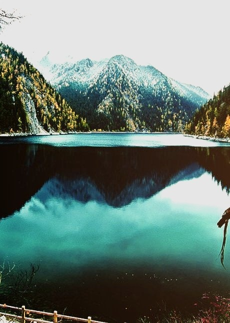 Cool, Classy, Nature, Mountains, Forest